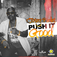 Push It Good - Single