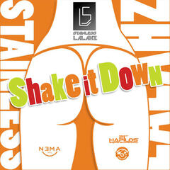Shake it Down - Single