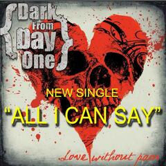 All I Can Say - Single