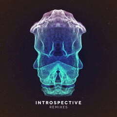 Introspective - Remixes