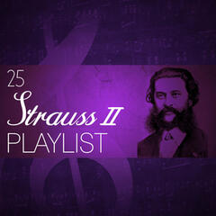 25 Strauss II Playlist