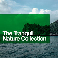 The Tranquil Nature Collection