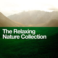 The Relaxing Nature Collection