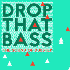 Drop That Bass: The Sound of Dubstep