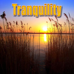 Tranquility (Nature Sounds)