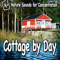 Nature Sounds for Concentration – Cottage by Day