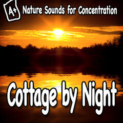 Nature Sounds for Concentration – Cottage by Night