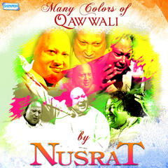 Many Colors of Qawwali by Nusrat