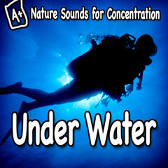 Nature Sounds for Concentration – Under Water
