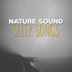 Nature Sound Sleep Songs