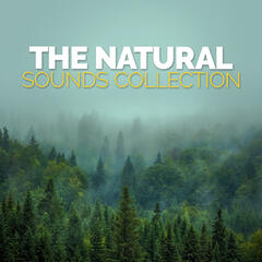 The Natural Sounds Collection
