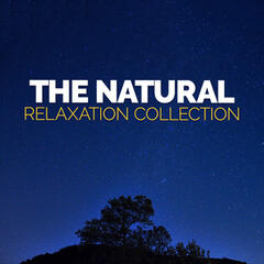 The Natural Relaxation Collection