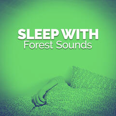 Sleep with Forest Sounds