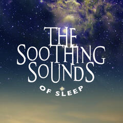 The Soothing Sounds of Sleep