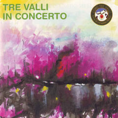 Tre Valli in Concerto
