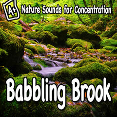 Nature Sounds for Concentration – Babbling Brook