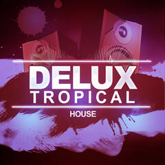 Deluxe Tropical House