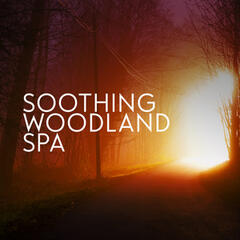 Soothing Woodland Spa
