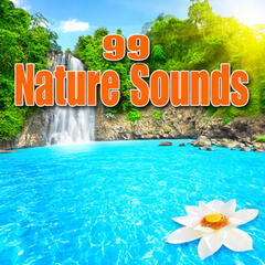 99 Nature Sounds