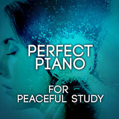 Perfect Piano for Peaceful Study