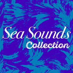 Sea Sounds Collection