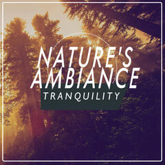 Nature's Ambiance: Tranquility