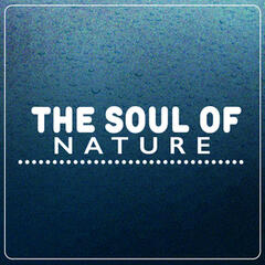 The Soul of Nature