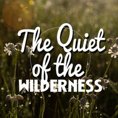The Quiet of the Wilderness