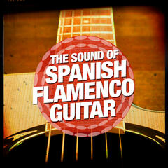 The Sound of Spanish Flamenco Guitar