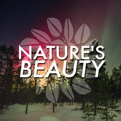 Nature's Beauty