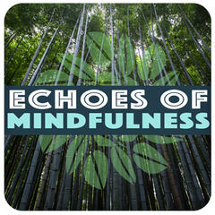 Echoes of Mindfulness