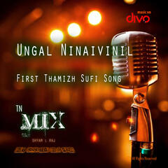 Ungal Ninaivinil (feat. Rizwan) - Single