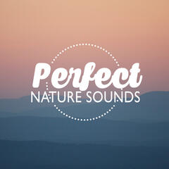 Perfect Nature Sounds