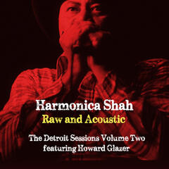 Raw and Acoustic - The Detroit Sessions Vol. Two