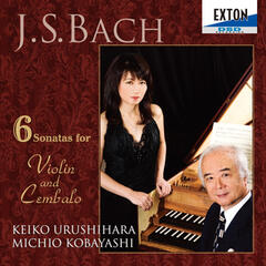 J.S. Bach: 6 Sonatas for Violin and Cembalo