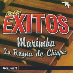 Solo Exitos Marimba, Vol. 3