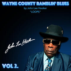 John Lee Hooker Loops, Vol. 2