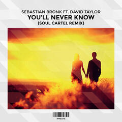 You'll Never Know (Soul Cartel Remix) [feat. David Taylor]