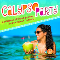 Calypso Party - A Collection of Island Grooves and Caribbean Rhythms