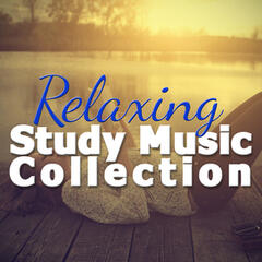Relaxing Study Music Collection