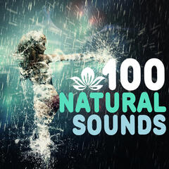 100 Natural Sounds