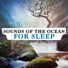 Sounds of the Ocean for Sleep