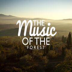 The Music of the Forest