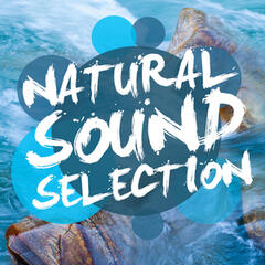 Natural Sound Selection