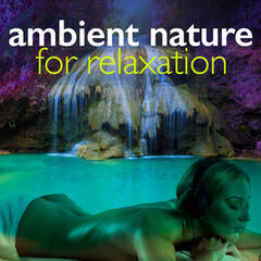 Ambient Nature for Relaxation