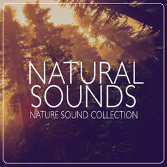 Natural Sounds: Nature Sound Collection
