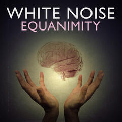 White Noise: Equanimity