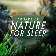 Sounds of Nature for Sleep