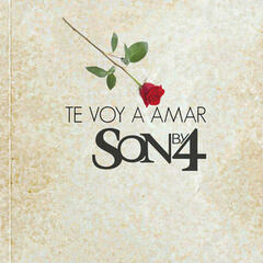Te Voy a Amar (Salsa Version)