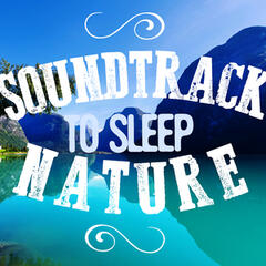 Soundtrack to Sleep: Nature